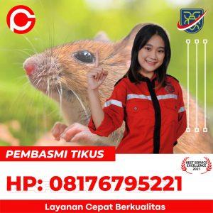 alat suara pengusir tikus di Sindangkempeng Cirebon